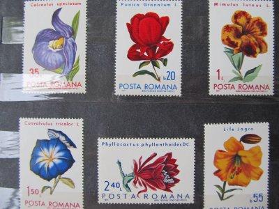 Flori , serie , 1971 , nestampilata