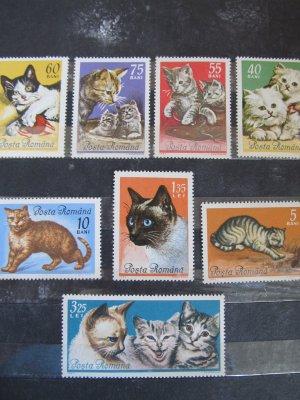Pisici , serie , 1965 , nestampilata